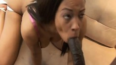 Bodacious ebony beauty works her lips and her pussy on a black shaft