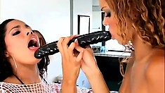 Two slender caramel lesbians drill their twats at the same time with a big dildo
