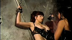 Big bondage fans show their deep hunger for sexy punishments