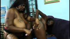 Two chunky dark skinned babes get involved in passionate lesbian sex