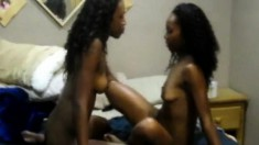 Lesbians get all riled up and start toying their ebony pussies