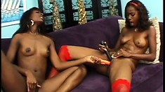 Uninhibited black sluts Taylor and Hydie give into some pussy-munching fun