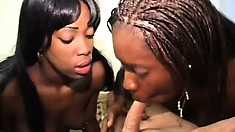 On their knees, two black babes have their sexy lips taking a white cock to orgasm